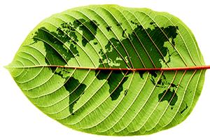 dexter MT - duurzaamheid - groen blad+wereldkaart